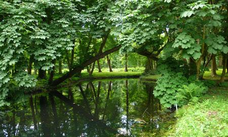 marijkebeek slingervijver Over Holland-450